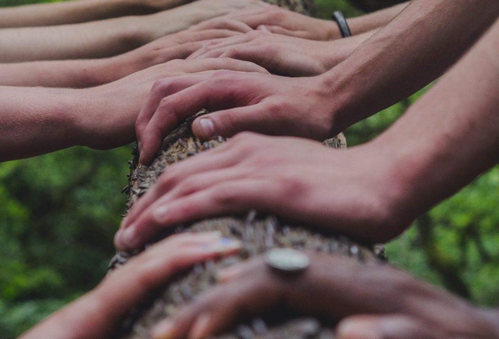 terapia de grupo en Bilbao manos apoyadas sobre un tronco de madera